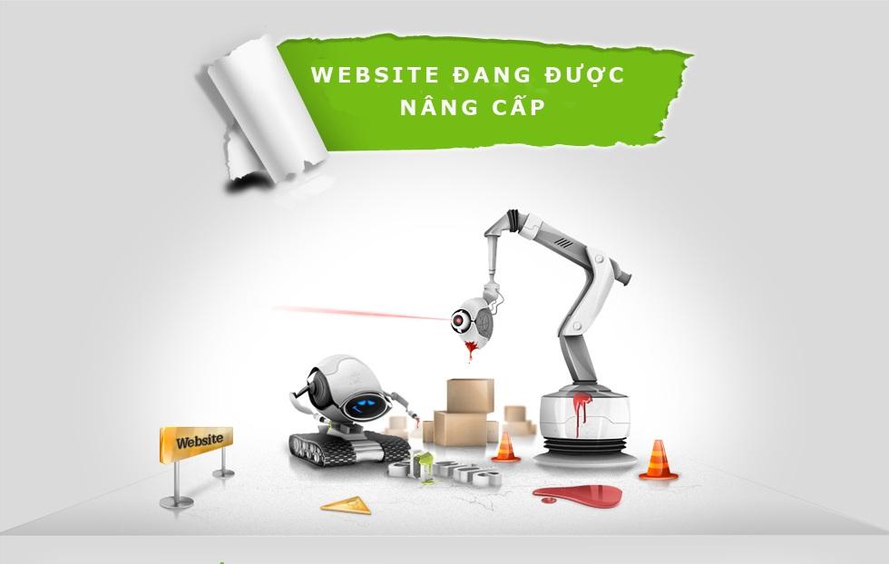 nâng cấp website bizweb